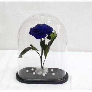 Forever Rose - Blue σε οβάλ γυάλα