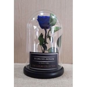 Τριανταφυλλο σε γυαλα - Forever rose