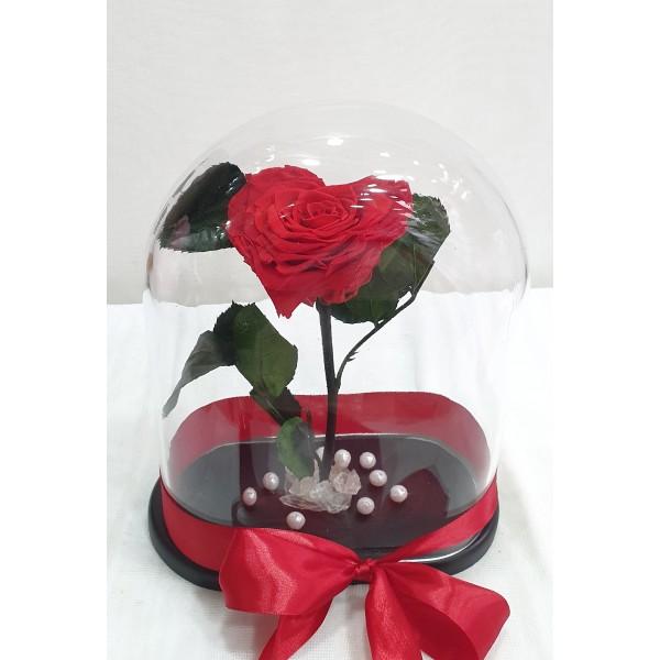 Τριανταφυλλο καρδιά σε γυαλα - Forever rose