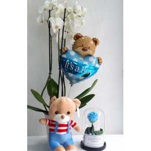 Ορχιδέα λευκή με μπαλόνι, λούτρινο & forever rose blue