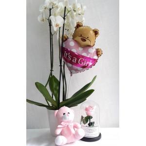 Ορχιδέα λευκή με μπαλόνι, λούτρινο & forever rose pink