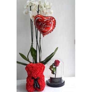 Ορχιδέα, Rose Bear, Forever Rose & μπαλόνι