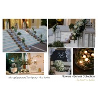 Στολισμος Εκκλησιας - Μεταμόρφωση Σωτήρος - Νέα Ιωνία  Στολισμός γάμου με ελιά